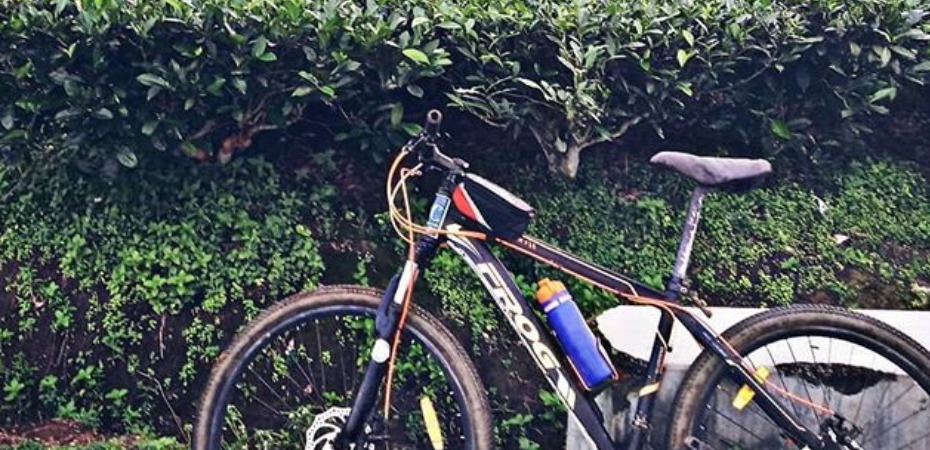 5 Things to Keep in Mind While Choosing Your First Ever Bicycle