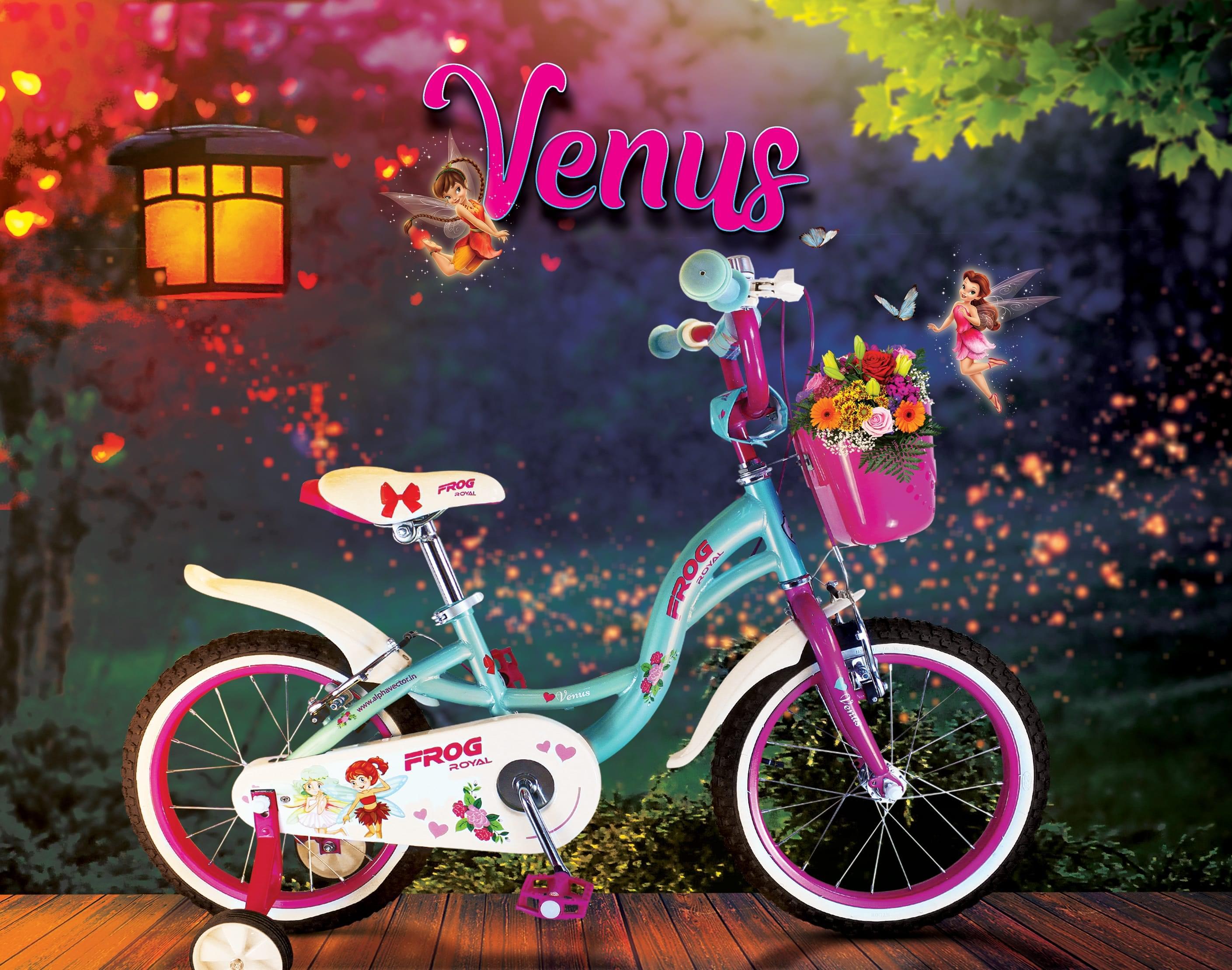 Venus 16 image 2